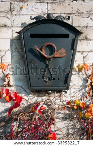 post box,post box on the wall,metal,old,letterbox,rust,plant on the wall,black letterbox,autumn leaves - stock photo