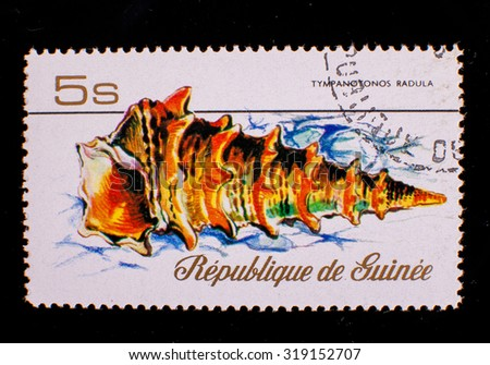 Postage stamp with a sea shell the Republic of Guinea - stock photo