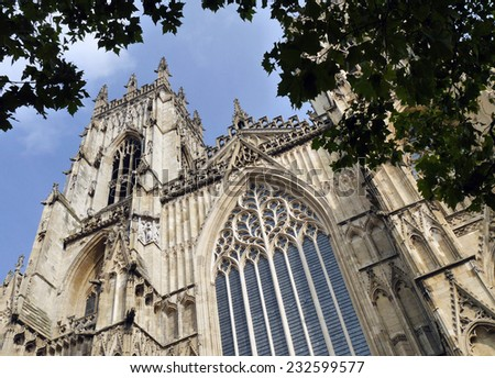 Postcard view of York Minster from under tree. York, North Yorkshire, England, UK. - stock photo