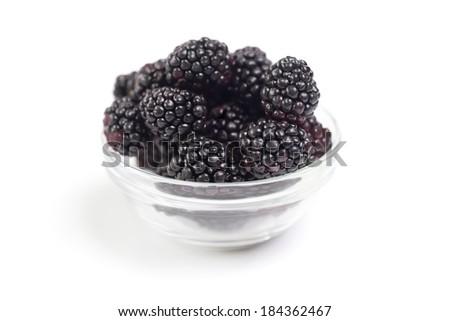 Pot of fresh blackberries isolated on white background - stock photo