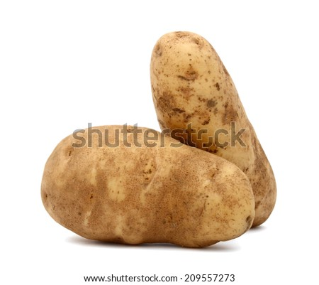 Potato, in Idaho plant - stock photo