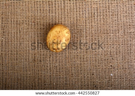 Potatoes on sacking. Potatoes on the coarse cloth. Vegetables. Young potatoes on the textile. Background. - stock photo