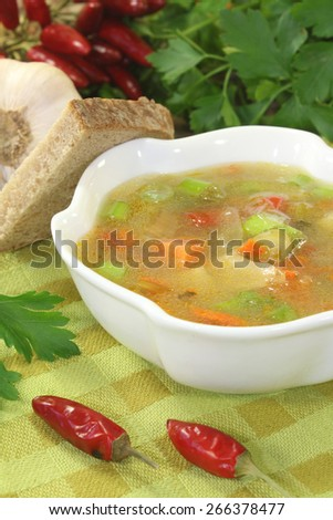 Poultry consomme soup with green, smooth parsley and bread - stock photo