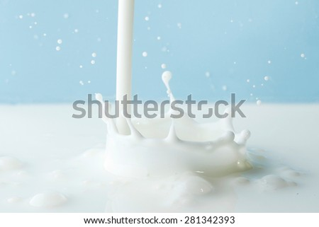 Pouring milk splash on blue background close-up - stock photo