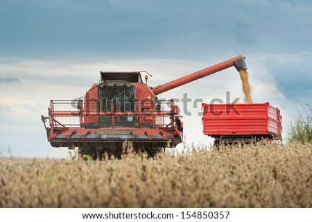 Pouring soy bean into tractor trailer - stock photo