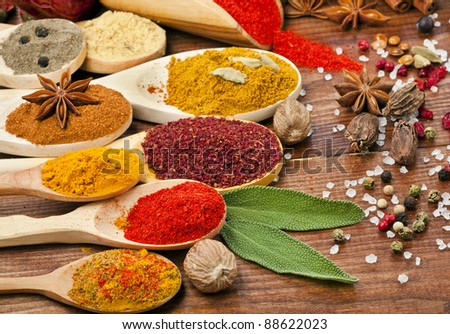 powder spices on spoons isolated in wooden background - stock photo