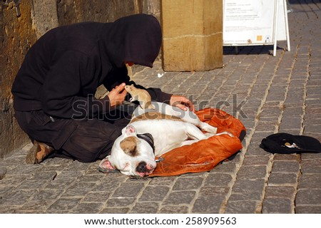 PRAGUE, CZECH REPUBLIC - JUNE 06, 2008: Young man, his dog and rat beg for money on the famous Charles Bridge - stock photo