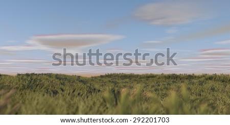 praire grass field - stock photo