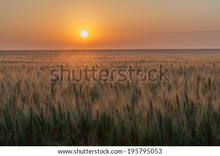Prairie sunrise - stock photo