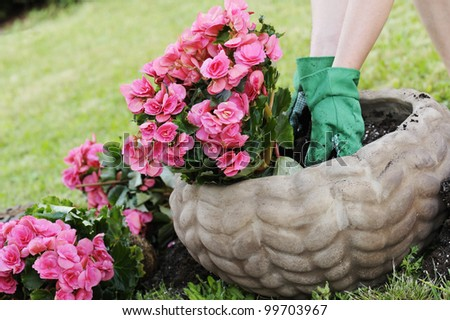 preparing a pot with the soil to plant flowers - stock photo
