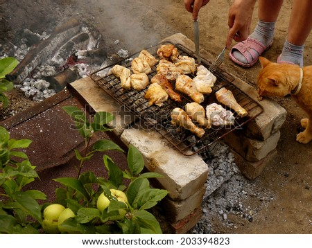 preparing chicken on grill in the garden with participation of red cat - stock photo