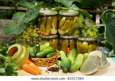Preparing preserves of pickled cucumbers. - stock photo