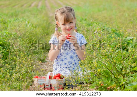 Preschool girl eating a big strawberry. Family time on self-picking farm, bright sun summer. - stock photo