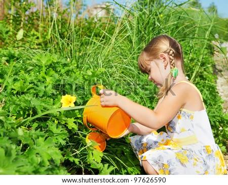 Preschool girl watering plants - stock photo