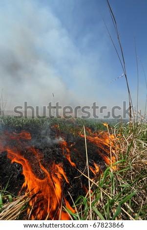 Prescribed prairie burn on the Great Plains in Nebraska - stock photo
