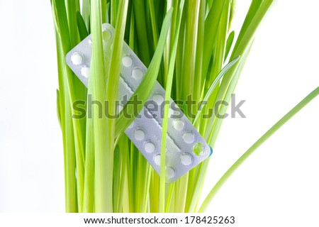 prescription pills over green leaves isolated  - stock photo