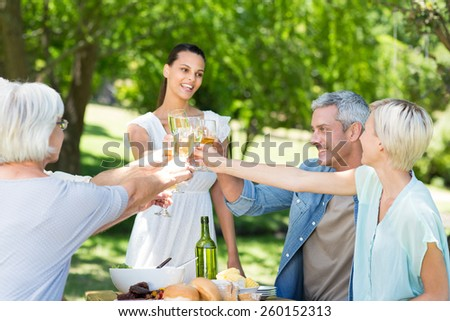 Pretty brunette toasting with her family on a sunny day - stock photo