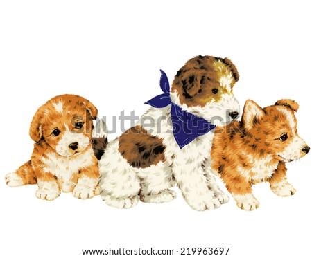 pretty dog - stock photo