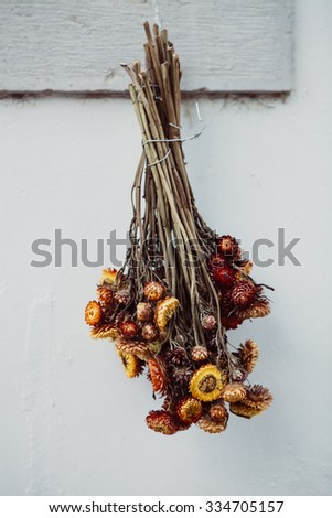Pretty dry flowers hanging on the wall  - stock photo