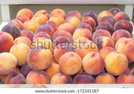Pretty Early Red Haven Peaches in a Bin in a Farmers Market.  Semi free stone.  Grown in Hood River, Oregon, United States - stock photo