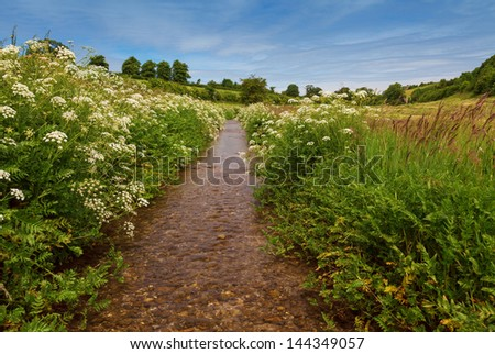 Pretty English stream running through a meadow with wild flowers and blue sky with clouds - stock photo