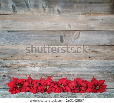 Pretty Faux Red Christmas Poinsettias in a Row on Stone Floor against Textured Rustic Wood Board Wall Background with extra room or space for Copy, Text or your Words.  Horizontal almost Square - stock photo