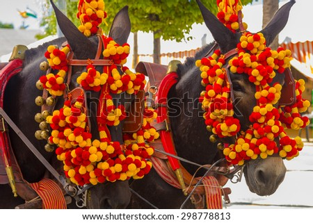 Pretty Horses with colorful ornaments participate in the famous Andalusian Horse Fair Andujar, Spain - stock photo