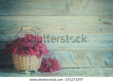 Pretty Red Christmas Poinsettia Flowers in a Basket on a Stone Surface against Rustic Wood Board Background with room or space for copy, text, your words.  Vertical with faded instagram tint filter - stock photo