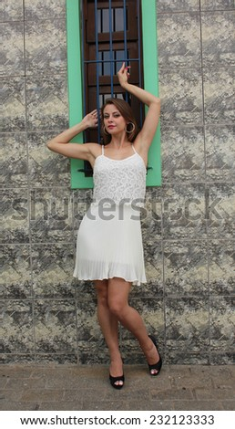 Pretty woman posing on a rustic wooden window - stock photo
