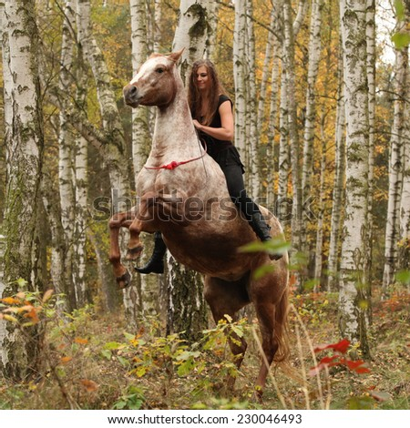 Pretty young girl on prancing horse in autumn forrest - stock photo