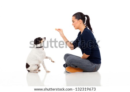 pretty young woman training a dog isolated on white background - stock photo