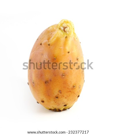 prickly pear, single fruit standing upright,  isolated on a white background  - stock photo