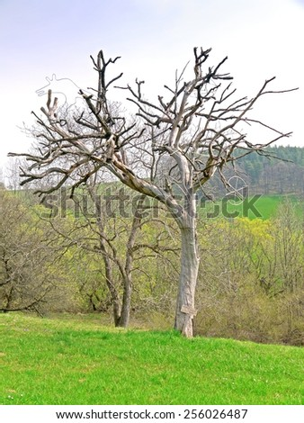 """PRIGGLITZ, AUSTRIA - 02  April 2014: The exhibition """"Kunst in der Landschaft"""" presents the work of international artists on the meadows and in the forest around the manor Gasteil.  - stock photo"""