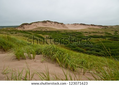 "Prince edward islands National park's ""Greenwich"" dunes - stock photo"