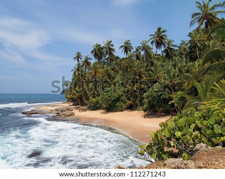Pristine beach with lush vegetation in the Caribbean - stock photo