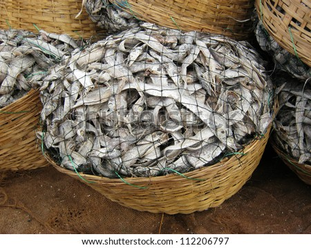 process of making dry fish in salt water and expose to sun  for a couple of days after process is completed it is ready for market / saltwater fish / salt fish - stock photo