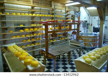 Production of Gauda chees in the Netherlands. - stock photo