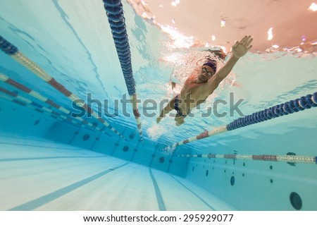Professional man swimmer inside swimming pool. - stock photo