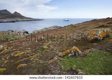 Professor Multanovski as seen from a beautiful hill on Steeple Jason Island in the Falklands. - stock photo