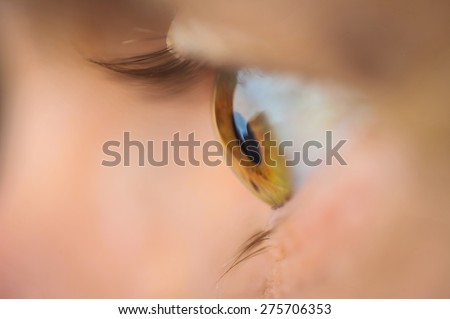 Profile of brown human eye with lashes and blurred background - stock photo