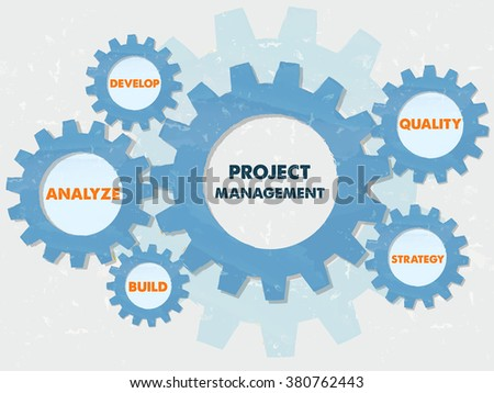 project management, develop, analyze, build, quality, strategy - text in blue grunge flat design gear wheels, business growth concept words - stock photo