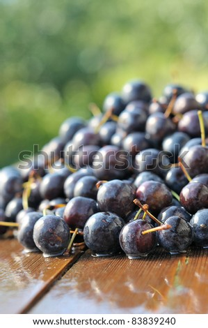 Prune on a wooden table. Ripe berries are bright bramble. - stock photo