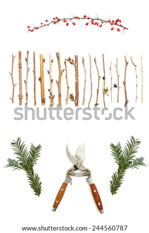 Pruning concept,  Secateurs with different twigs on white - pruning concept - stock photo