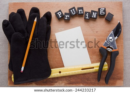 Pruning of trees and other plants with special gardening shears. - stock photo