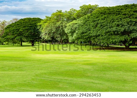 Public park background on a summer day - stock photo
