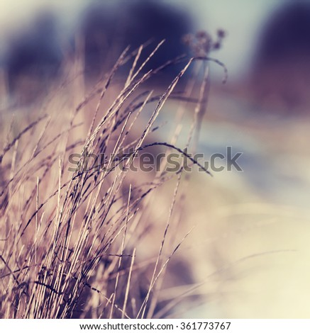 Puddle on the field/ spring background. - stock photo