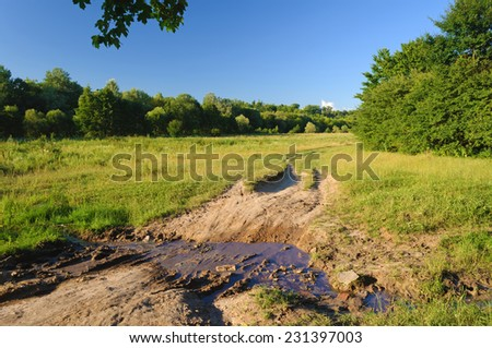 puddle on the road near trees - stock photo