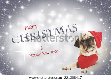 pug in santa costume lying, exempted, white background, dressed as santa claus, wearing a plush heart around his neck - stock photo