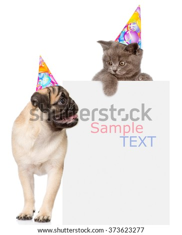 Pug puppy and small kitten in birthday hats above white banner. Space for text. isolated on white background - stock photo