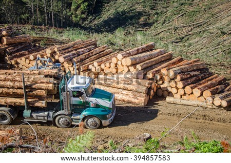 PUKEKOHI, NZ - APRIL 22: Stacked wooden logs, tree trunks on a logging truck on April 22, 2014. Forestry is New Zealand third largest export earner with international sales in excess of $4 billion. - stock photo